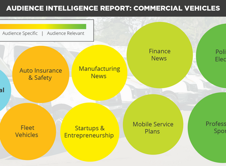 Commercial Vehicles Audience Intelligence Report