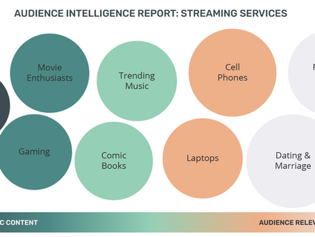 Audience Intelligence Report: Streaming Services