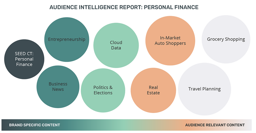 personal finance audience intelligence report spectrum media services cookieless audience extension