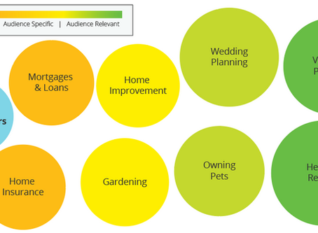 Audience Intelligence Report: Homeowners