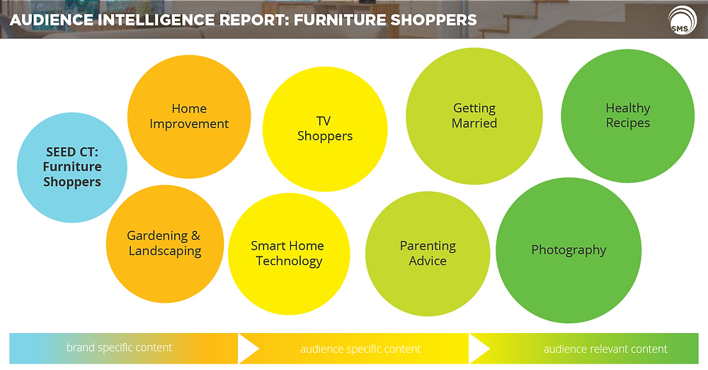 furniture shoppers audience intelligence report spectrum media services cookieless audience extension