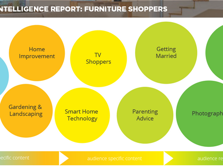 Audience Intelligence Report: Furniture Shoppers