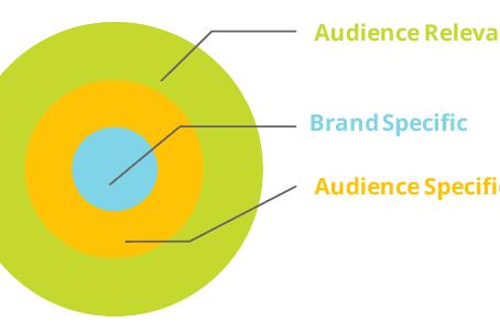 Spectrum's Audience Intelligence Report