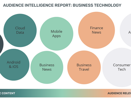 Audience Intelligence Report: Business Technology