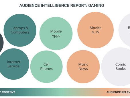 Audience Intelligence Report: Gaming