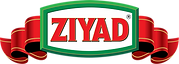 ZIyad_New_LOGO_Final_Process_NO BRAND co