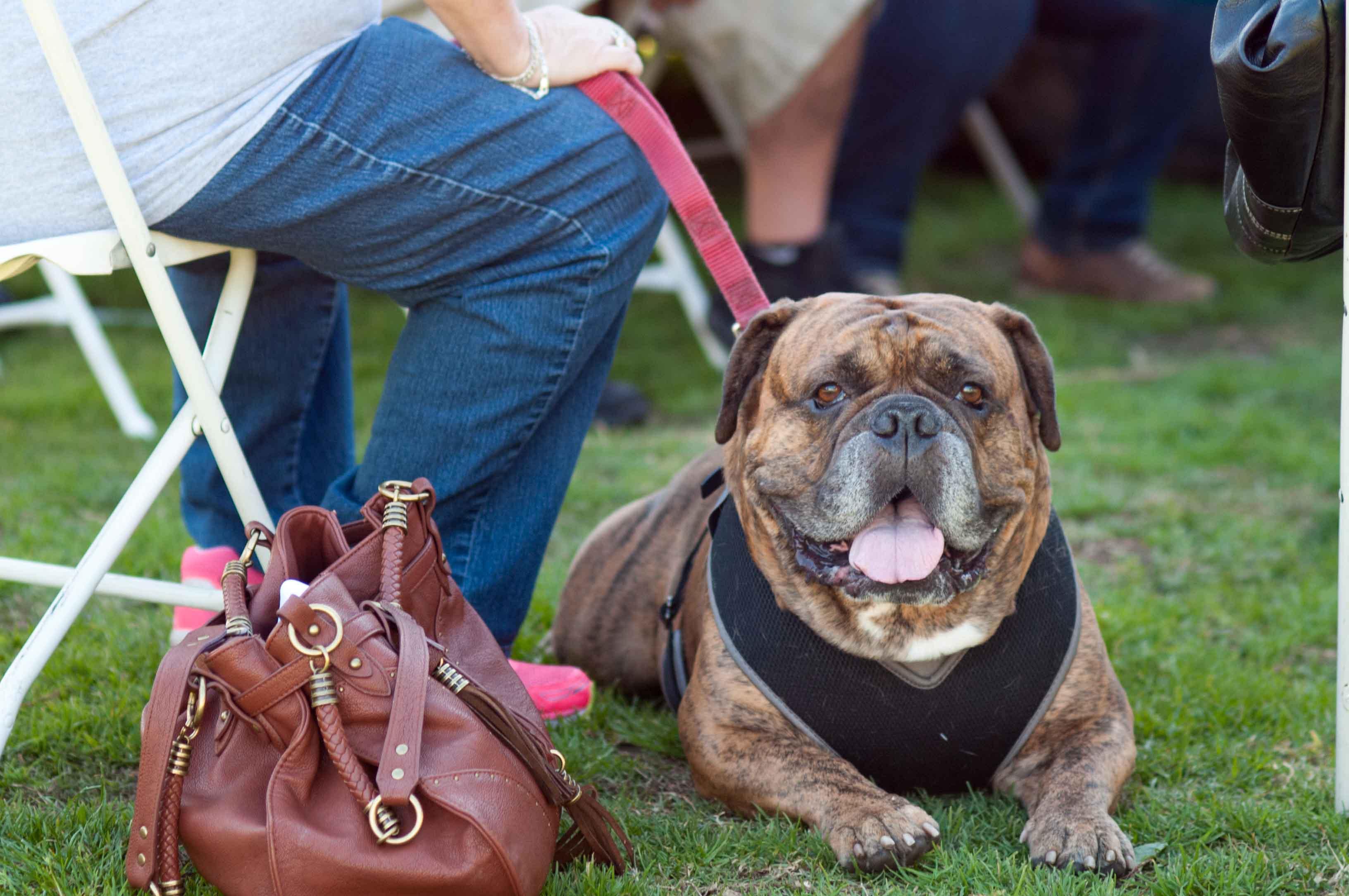 People  Pets 140118 45_.jpg