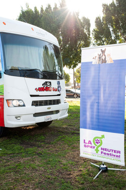 Vol Vendor Trucks 140118 06_.jpg