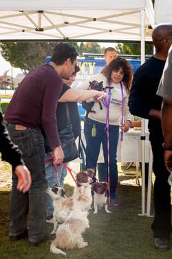 People  Pets 140118 19_.jpg