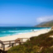 garrapata-beach-pathway.jpg