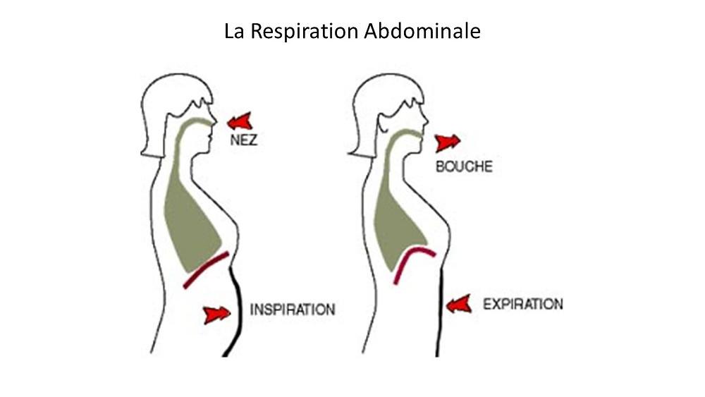 la respiration humaine simplifiée