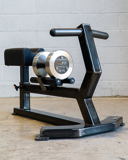Dumbbell Row Bench