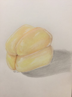 Bell Pepper - Colored Pencil on Paper