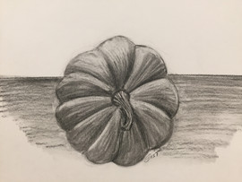 Pumpkin - Charcoal on Paper