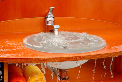 Drain Cleaners and Bottled Clog Remedies