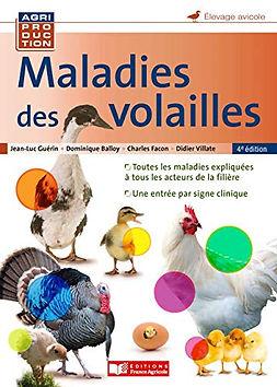 maladies des volailles.jpg