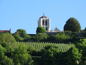 VezelayCGF.jpg
