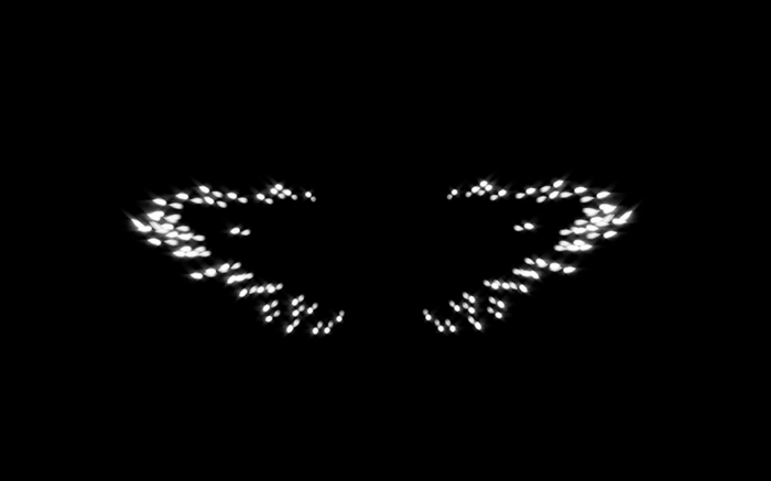 Wing_01