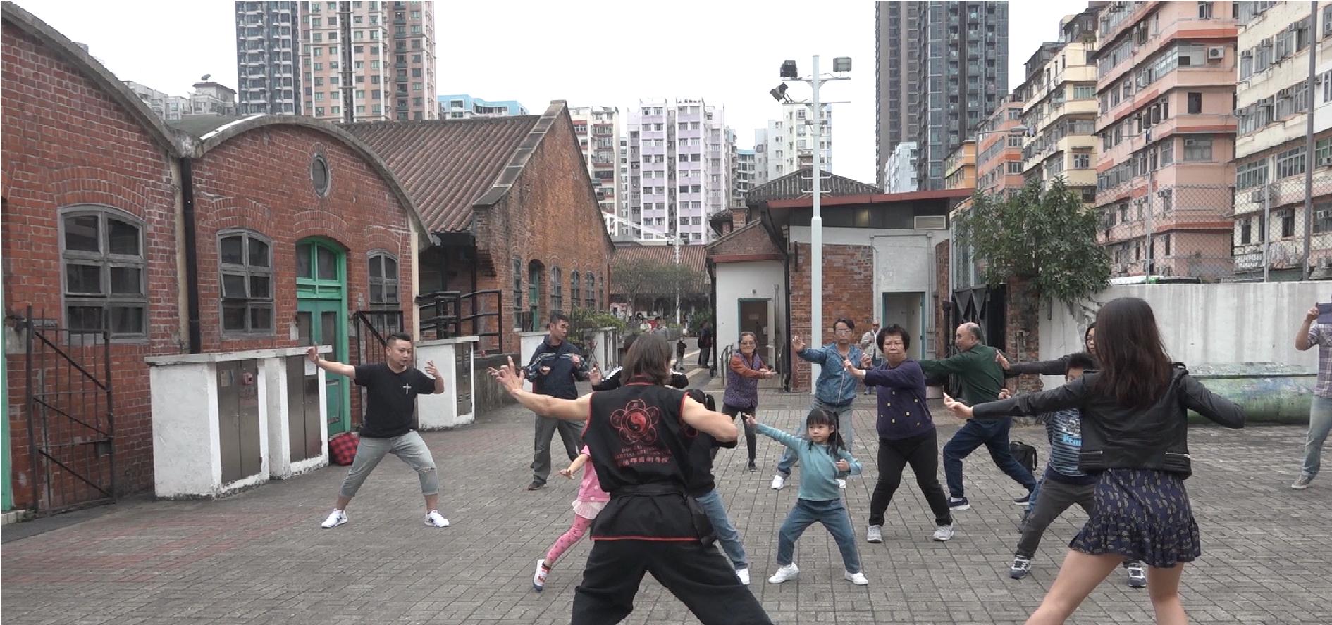 Choy Li Fut Art Experience