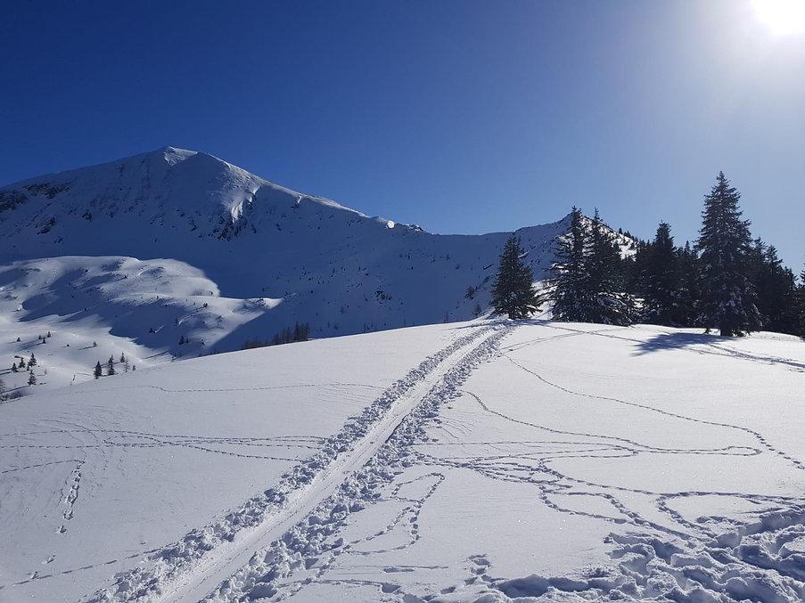 Skitour aufs Gumpeneck im Naturpark Sölktäler