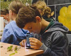 Schulprogramm-naturparklabor.jpg