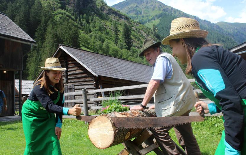 Almdiplom Holzsägen