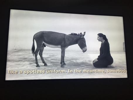 コペンハーゲン旅行② Louisiana MuseumのMarina Abramović企画展