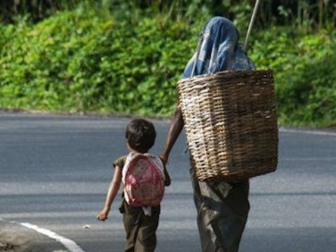 இலங்கையில் சிறுவர் தொழிலார்களாக  40% பேர் பெருந்தோட்டங்களை சேர்ந்தவர்கள்.