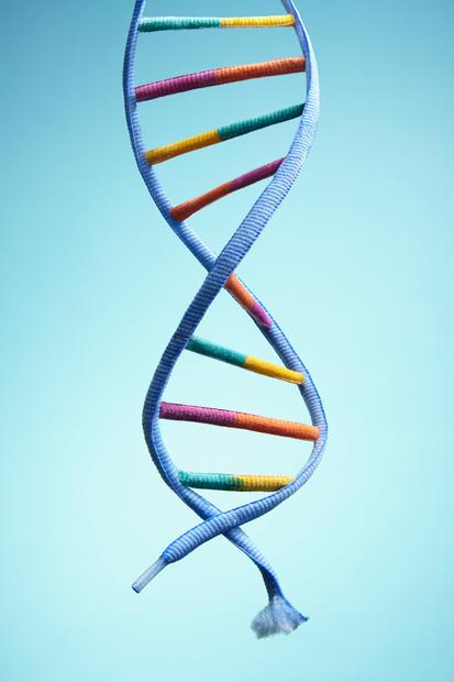 DNA-0099-101_Final.jpg