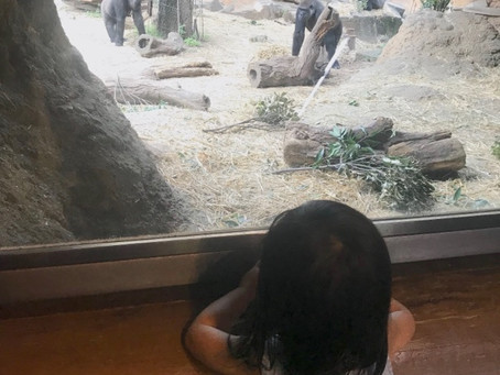 2歳児の世界観
