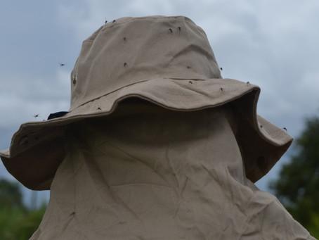 Malária em ambientes hostis – como evitar