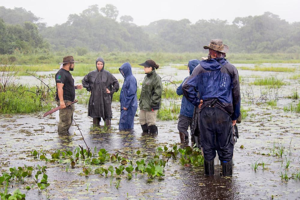 Expedição Pantanal Norte 2017 - Foto: Edlayne de Paula