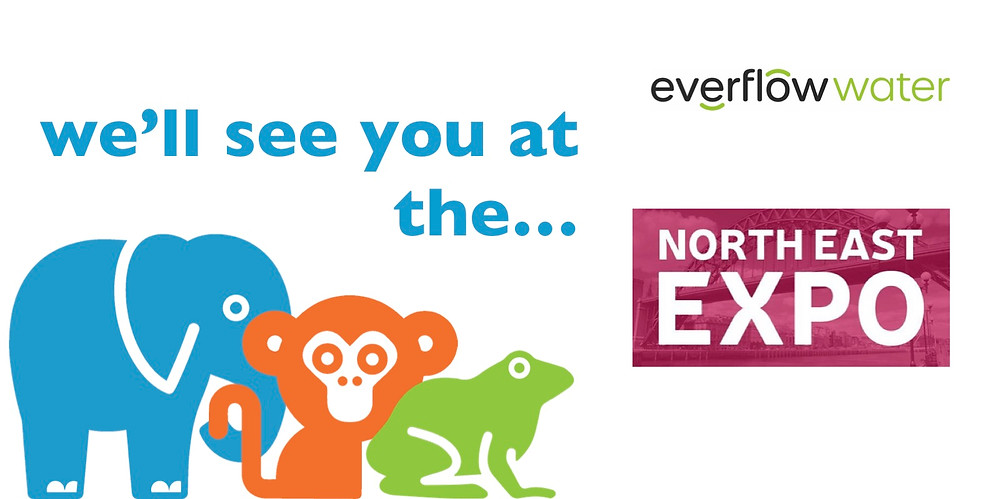 Everflow Water at the North East Expo!