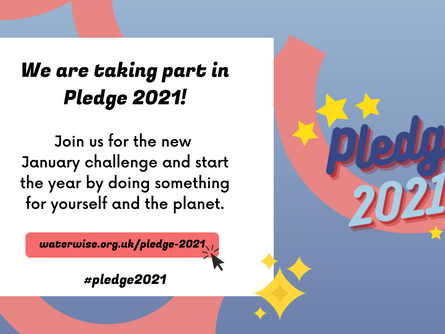 Waterwise Pledge 2021