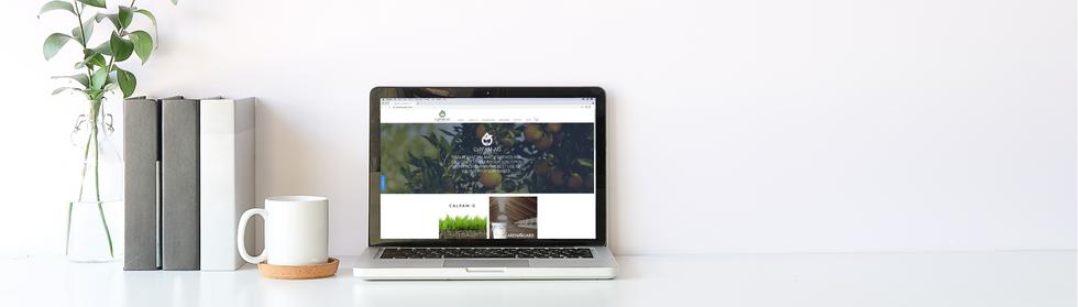 CalPam AG Website