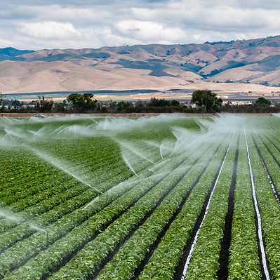 irrigation-square.png