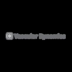 Vascular Dynamics Inc.
