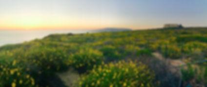 Nature Preserve Sunset.jpg