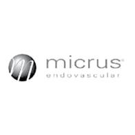 Micrus Endovascular