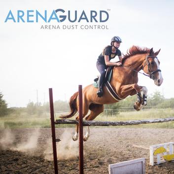 ArenaGuard | Click for Portfolio