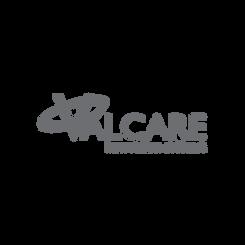 Valcare Inc.