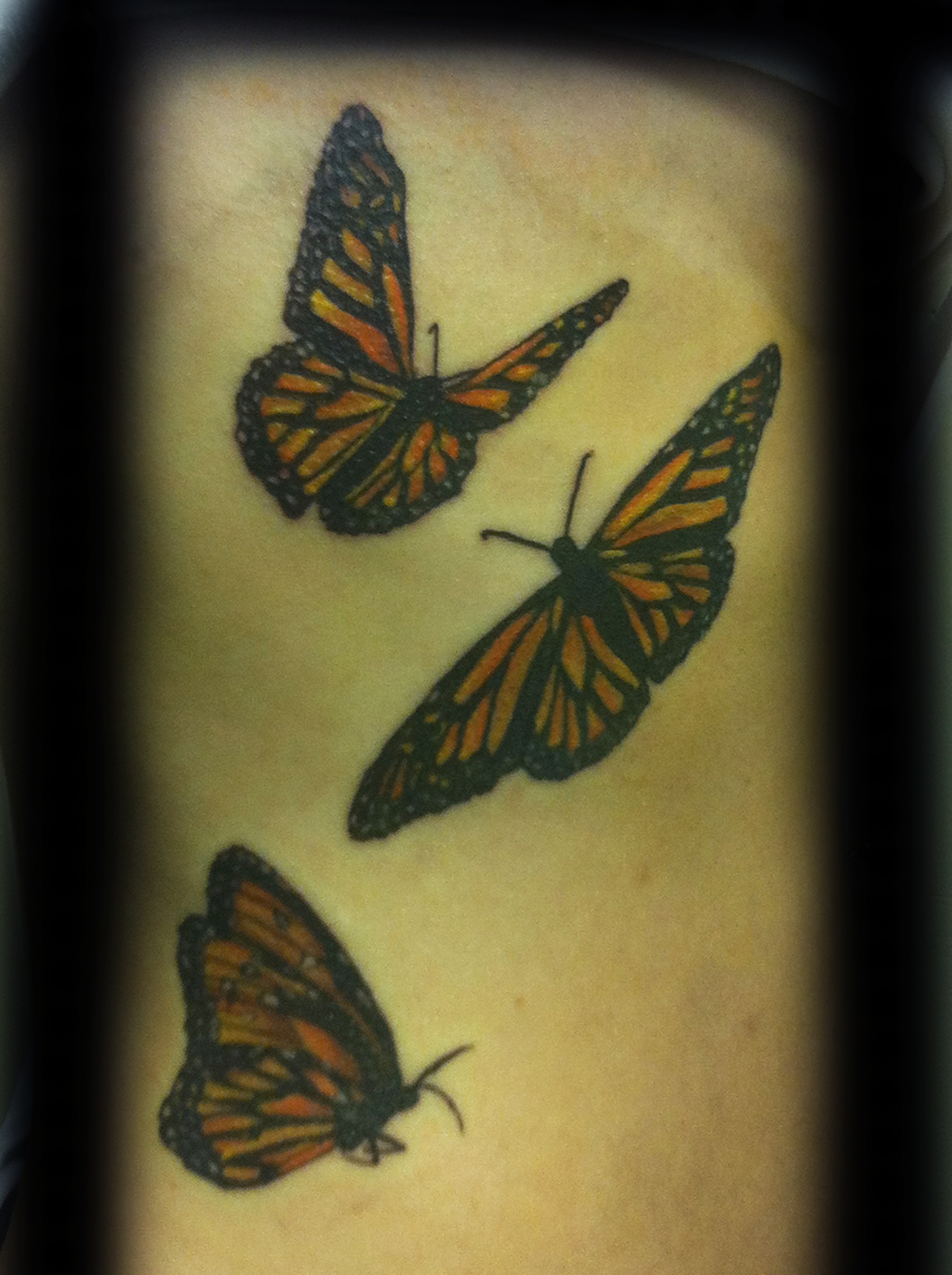 tattoo, tattoo shop, butterflies