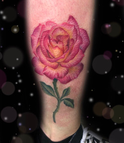 pink yellow rose tattoo