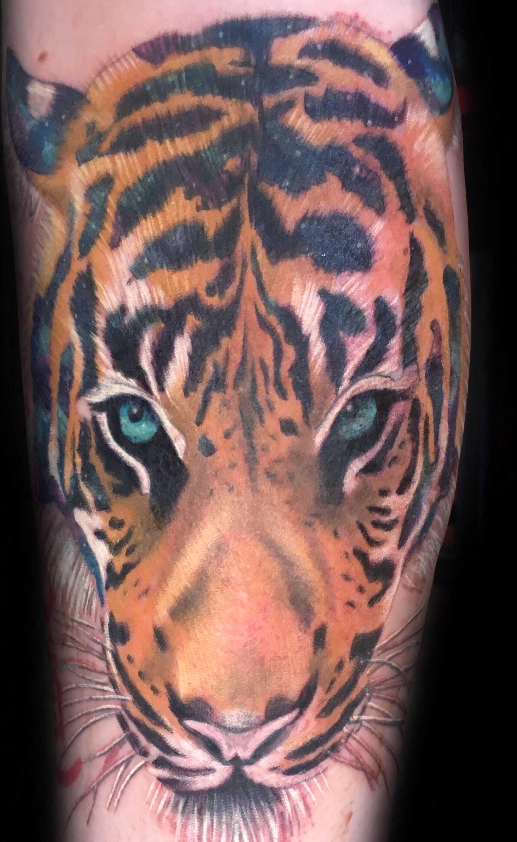 tattoo, tattoo shop, tiger
