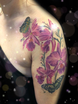 cattlaya brazilian orchid tattoo