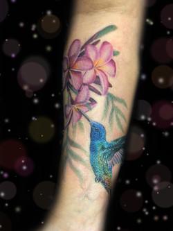 plumeria hummingbird tattoo