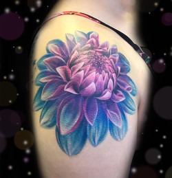 dahlia flower tattoo