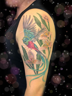 bird orchid tattoo