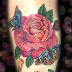 tattoo, tattoo shop, rose