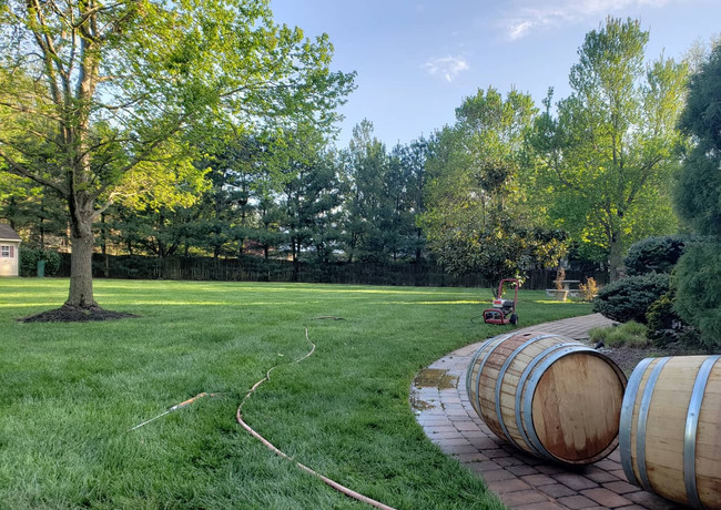 Cleaning the barrels in the backyard